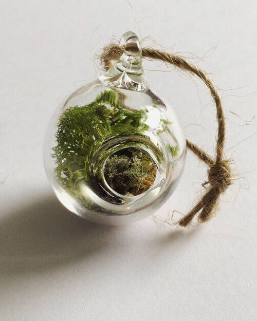Small Terrarium Ornament
