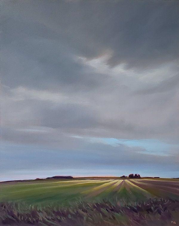 Soft Prairie Light