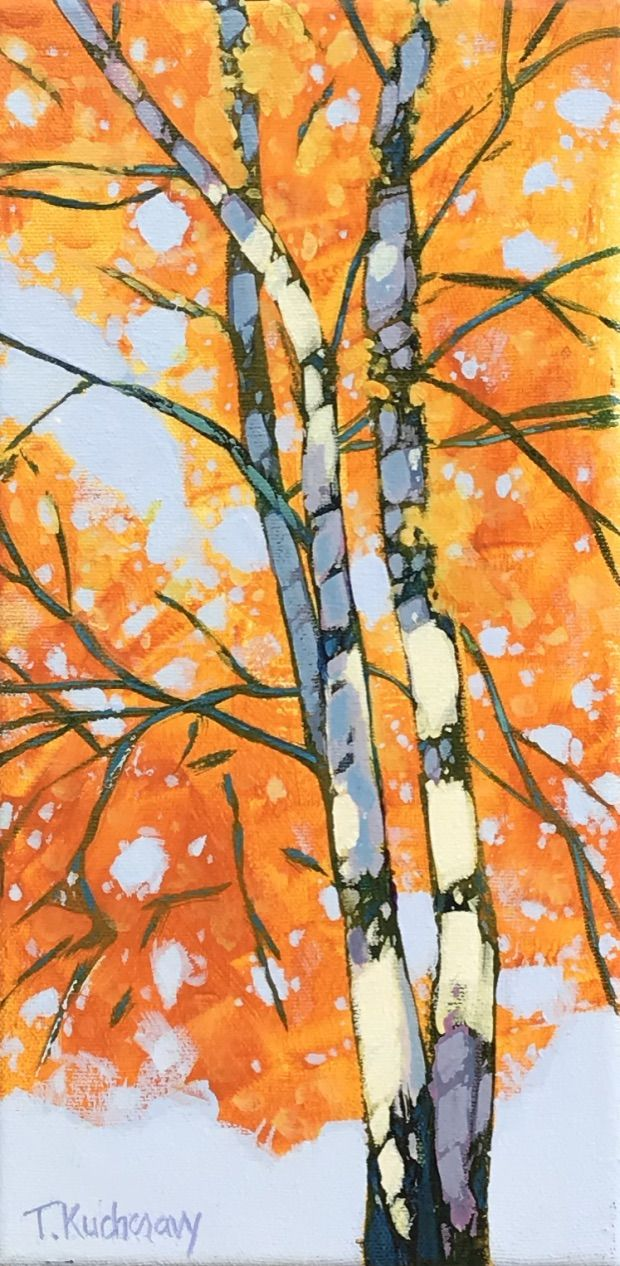 The Aspen Assiniboine Forest, Study 1