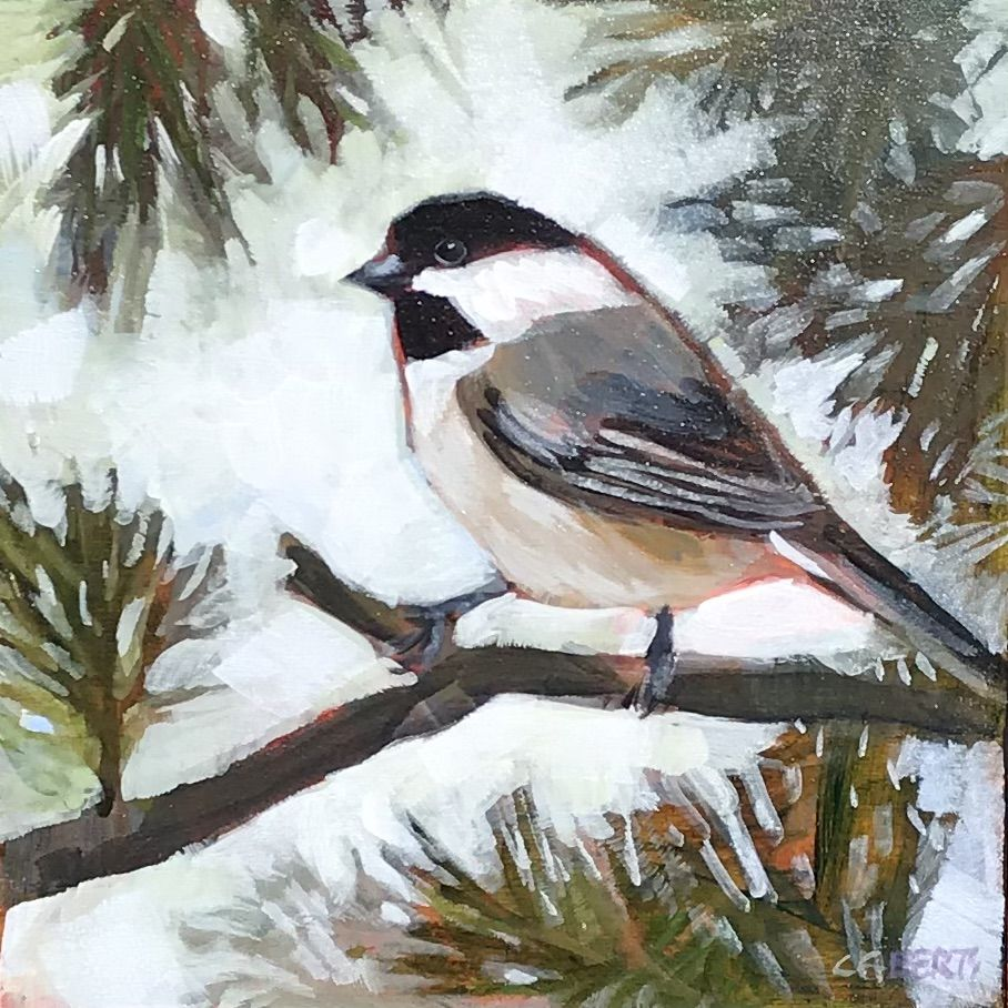 Chickadee in the Spruce